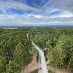 Reisen im Rollstuhl: Lüneburger Heide – Baumwipfelpfad und Wildpark